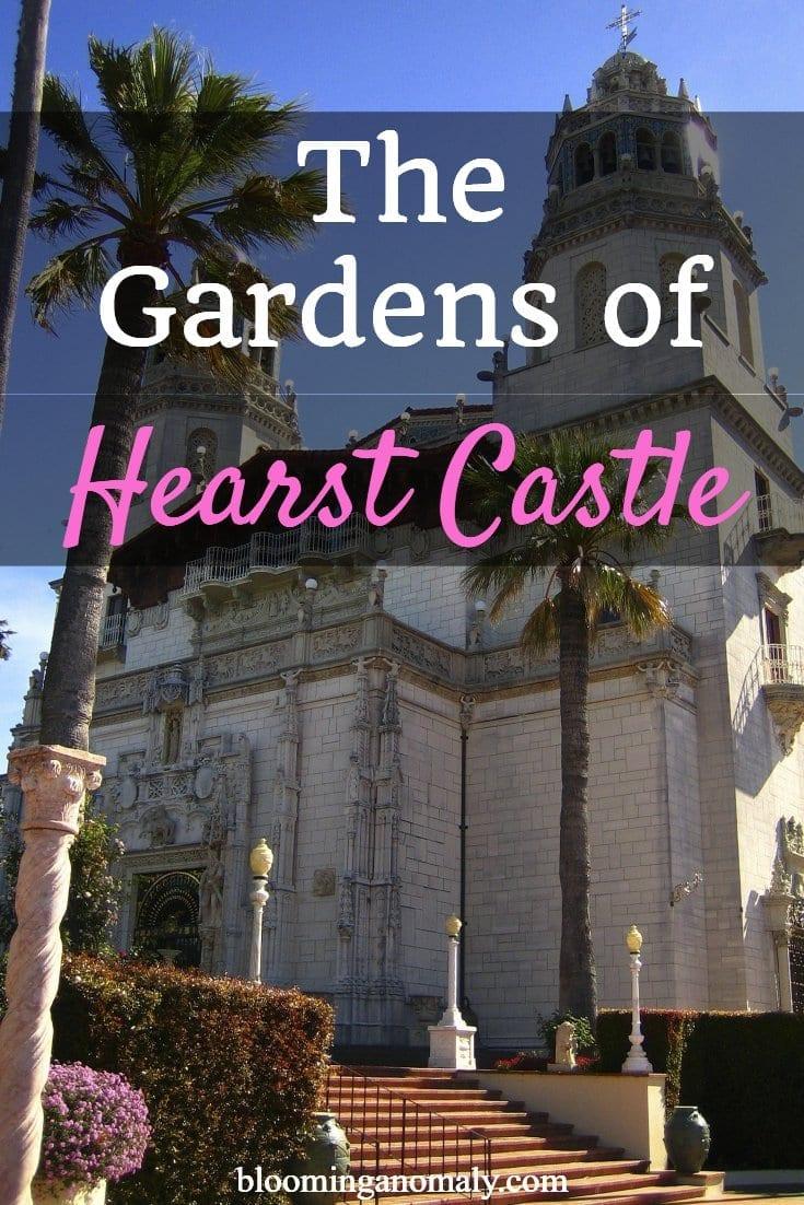 gardens of hearst castle, hearst castle, gardens, flowers, fuchsiasi