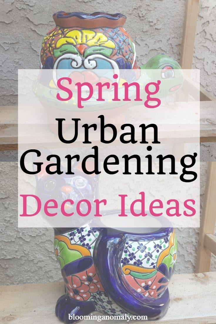 spring urban gardening decor ideas