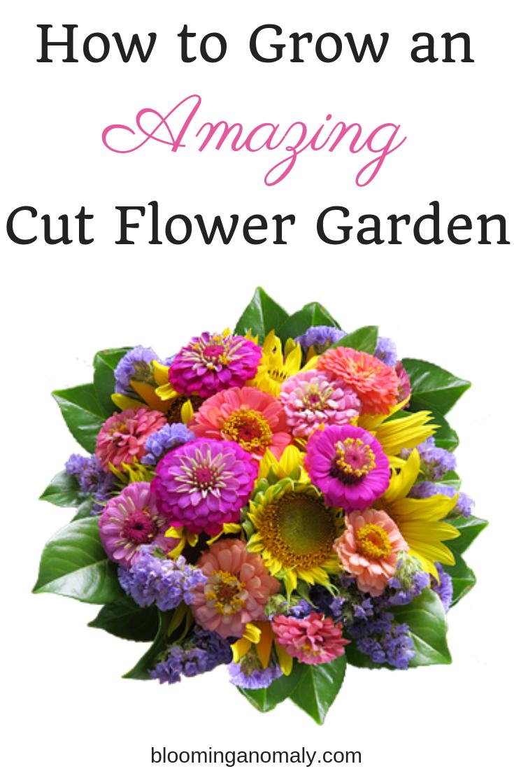 how to grow an amazing cut flower garden, flower garden, cut flowers, flower bouquet
