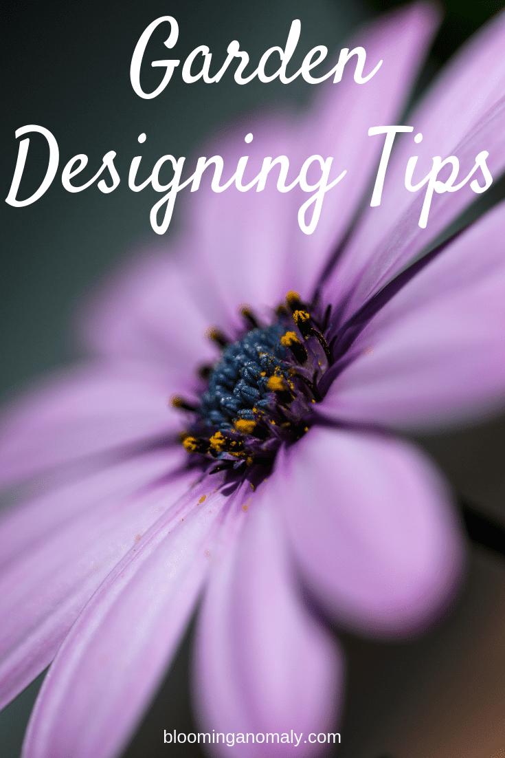 garden designing tips