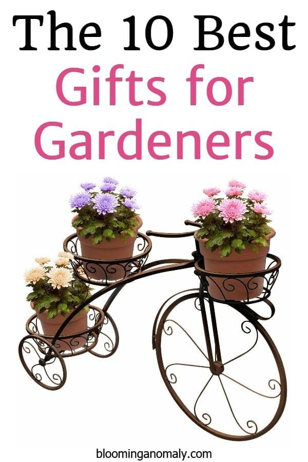 the 10 best gifts for gardeners