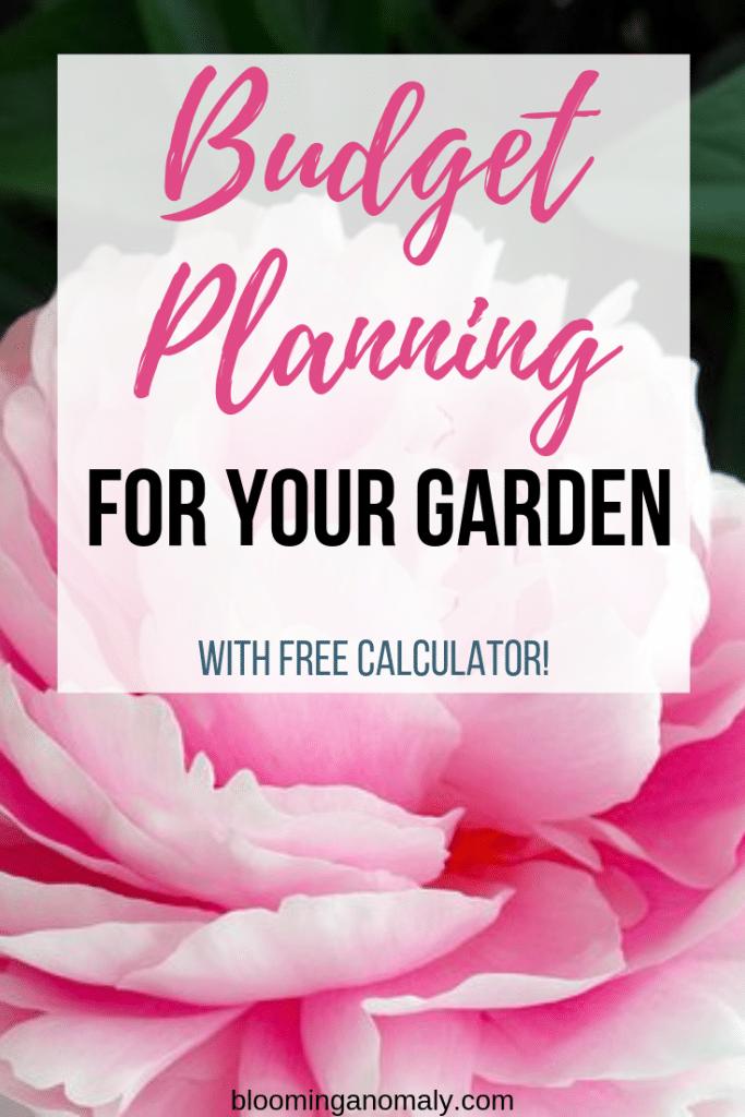budget planning, garden, flower, pink flower