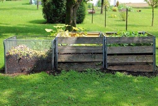 compost area, fall garden