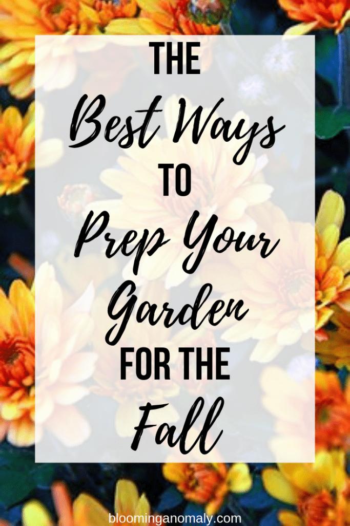 prep your garden for fall