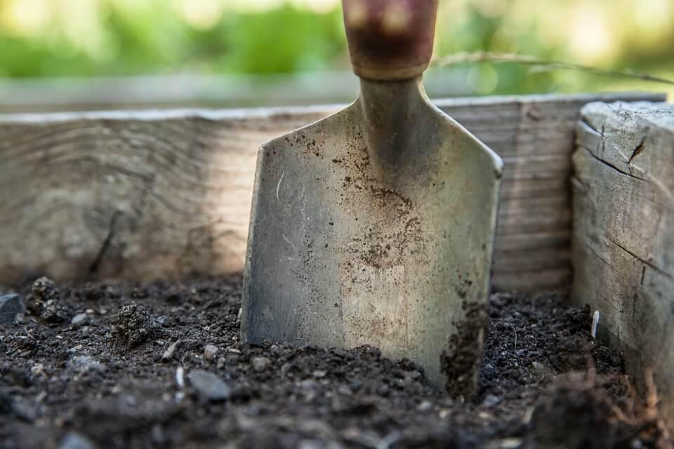 victory garden soil