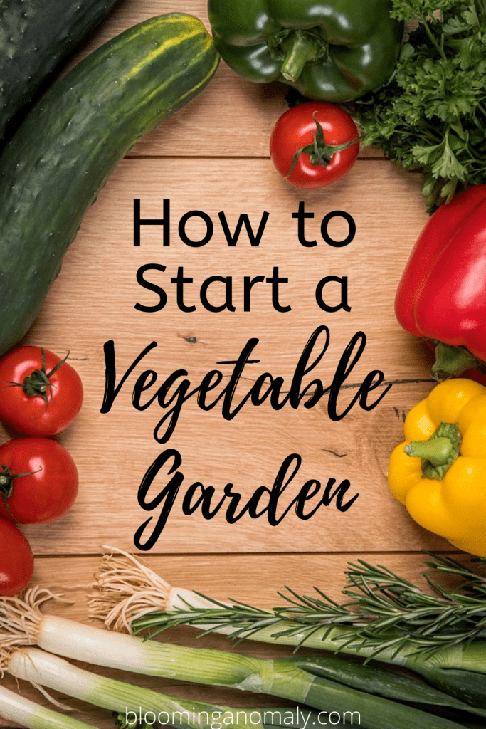 how to start a vegetable garden (1)